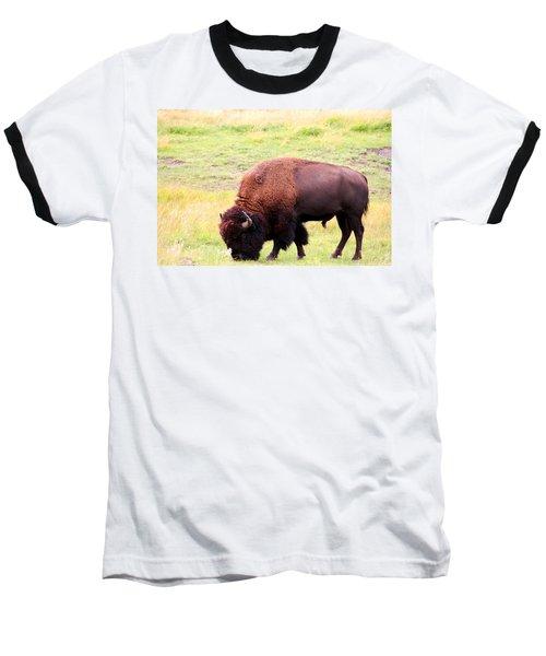 Buffalo Roaming Baseball T-Shirt