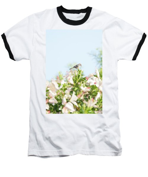 Bushtit Atop The Hibiscus Baseball T-Shirt