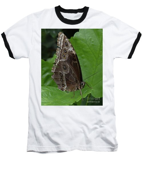 Butterfly 5 Baseball T-Shirt