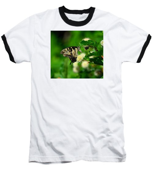 Butterfly And The Bee Sharing Baseball T-Shirt by Kathy Eickenberg