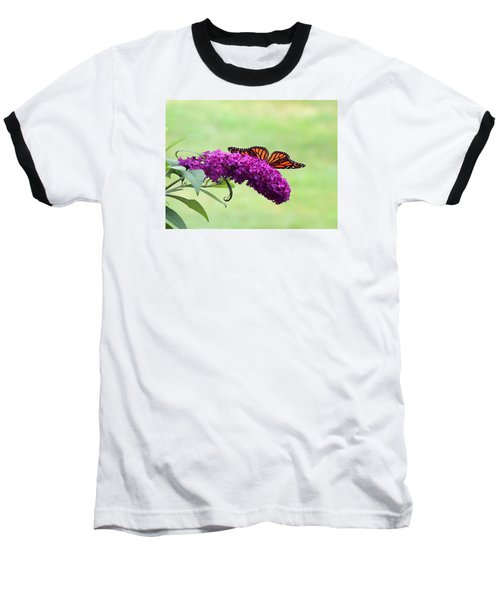 Baseball T-Shirt featuring the photograph Butterfly Wings by Teresa Schomig
