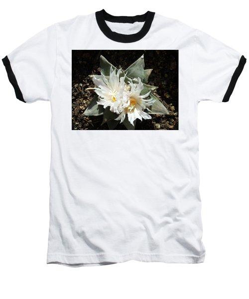 Cactus Flower 9 Baseball T-Shirt