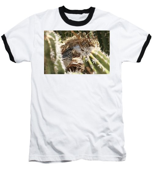 Cactus Wren Feather Baseball T-Shirt