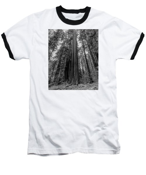 California Forest Baseball T-Shirt
