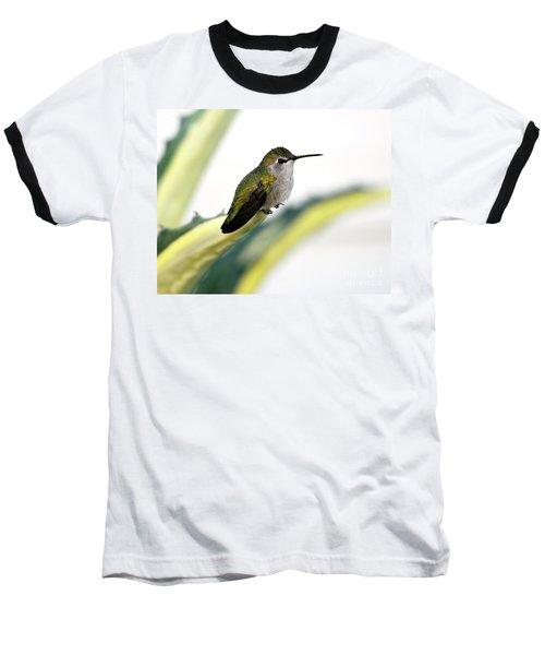 Calliope Hummingbird On Agave Baseball T-Shirt