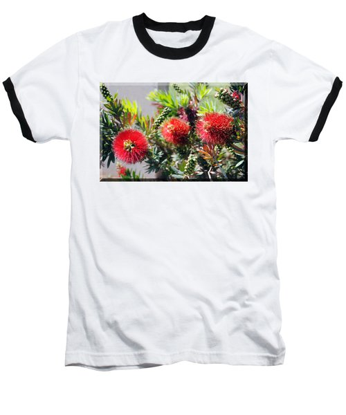 Callistemon - Bottle Brush T-shirt 6 Baseball T-Shirt