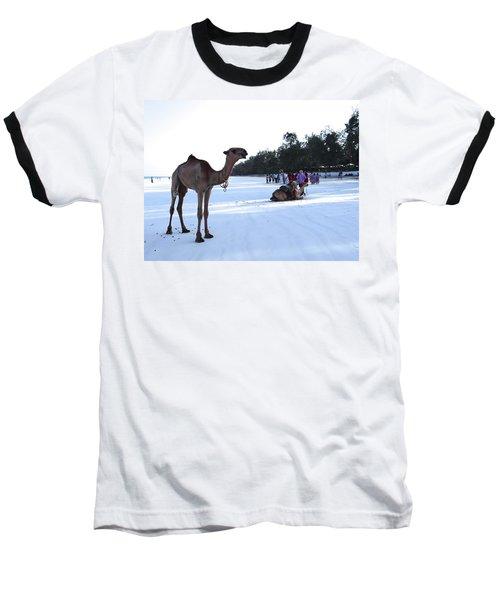 Camel On Beach Kenya Wedding 5 Baseball T-Shirt