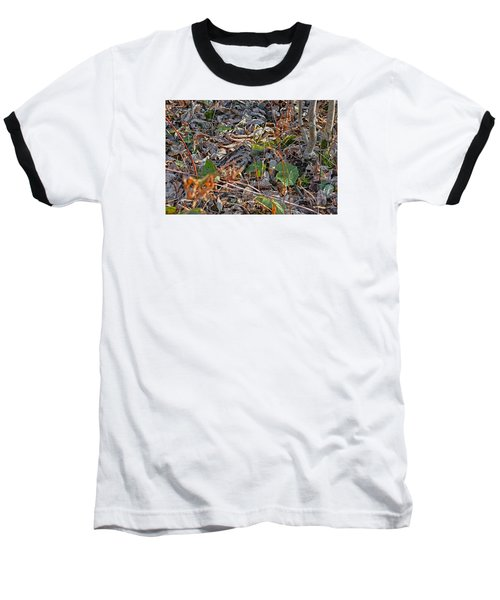 Camouflaged Plumage With Fallen Leaves Baseball T-Shirt by Asbed Iskedjian