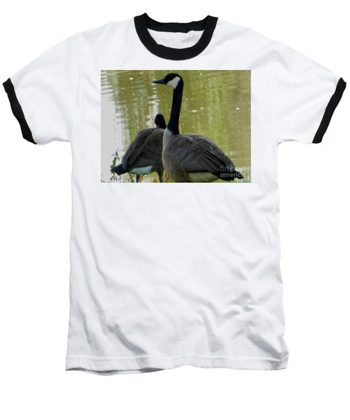 Canada Goose Edge Of Pond Baseball T-Shirt