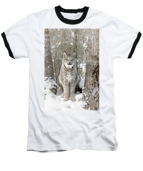 Canadian Wilderness Lynx Baseball T-Shirt by Wes and Dotty Weber