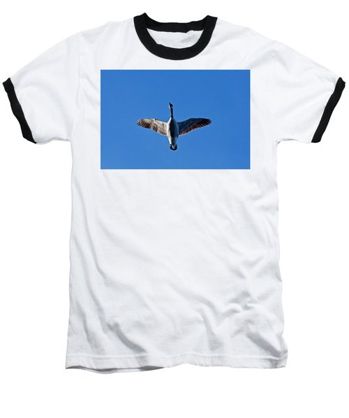 Baseball T-Shirt featuring the photograph Candian Goose In Flight 1648 by Michael Peychich