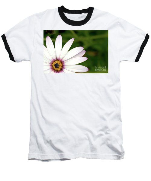 Cape Daisy Baseball T-Shirt by Baggieoldboy