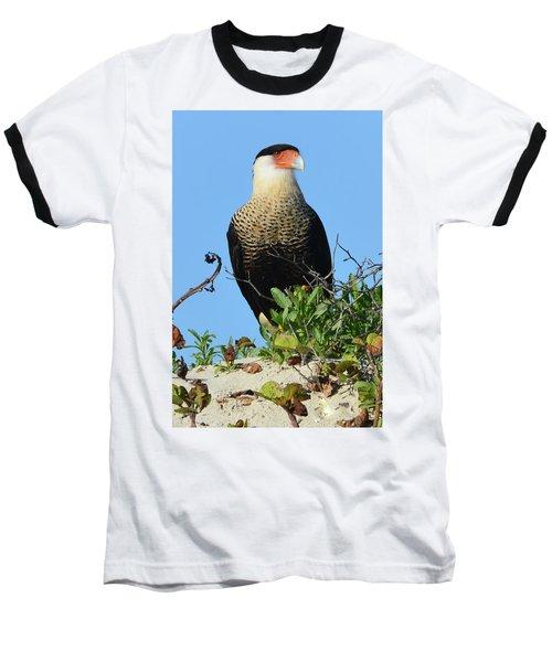 Baseball T-Shirt featuring the photograph Caracara Portrait by Debra Martz