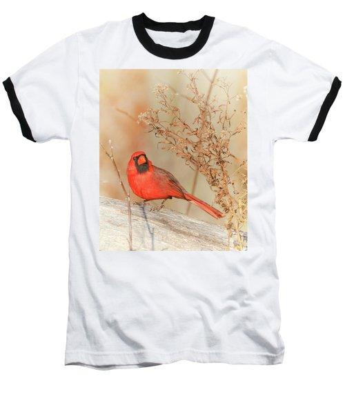 Cardinal In Fall  Baseball T-Shirt