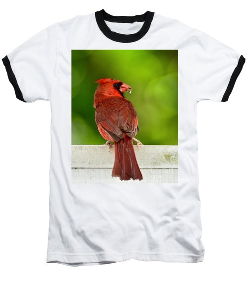 Cardinal Red Baseball T-Shirt