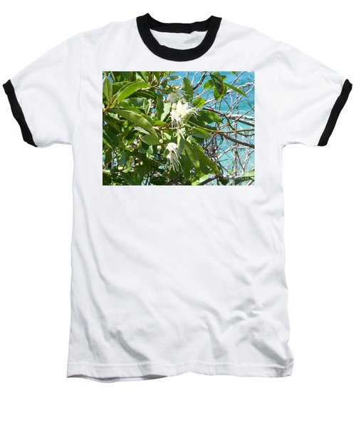 Caribbean Honeysuckle Baseball T-Shirt by Margaret Brooks