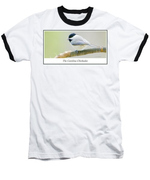 Carolina Chickadee, Animal Portrait Baseball T-Shirt by A Gurmankin