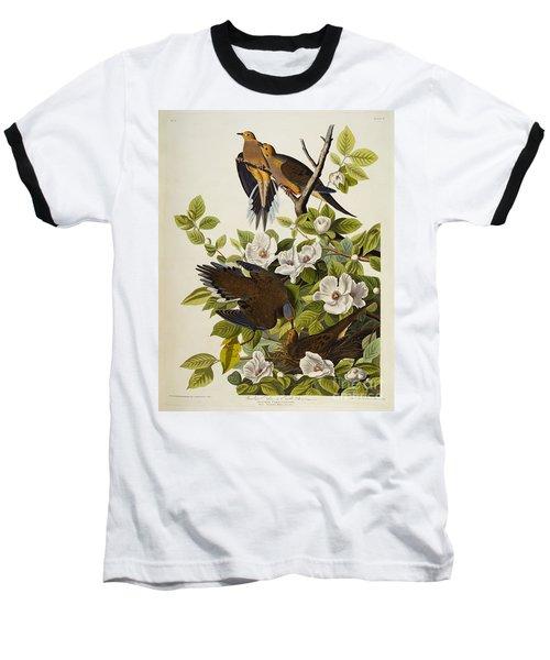 Carolina Turtledove Baseball T-Shirt by John James Audubon