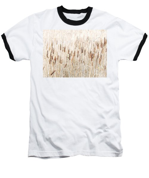 Cat O' Nine Tails Baseball T-Shirt