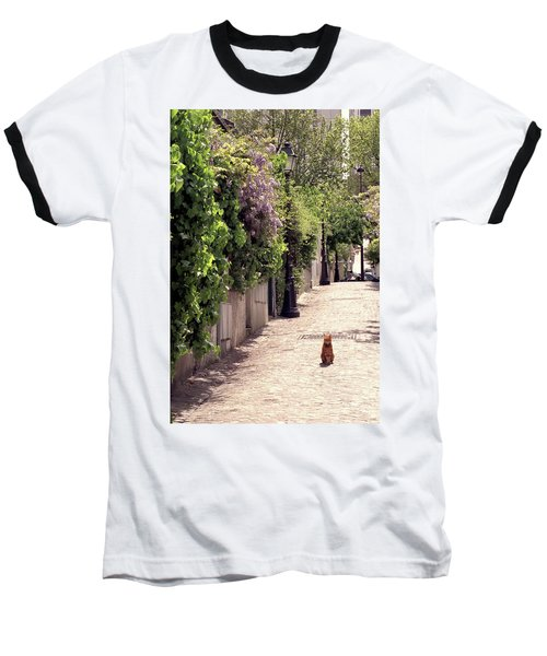 Cat On Cobblestone Baseball T-Shirt
