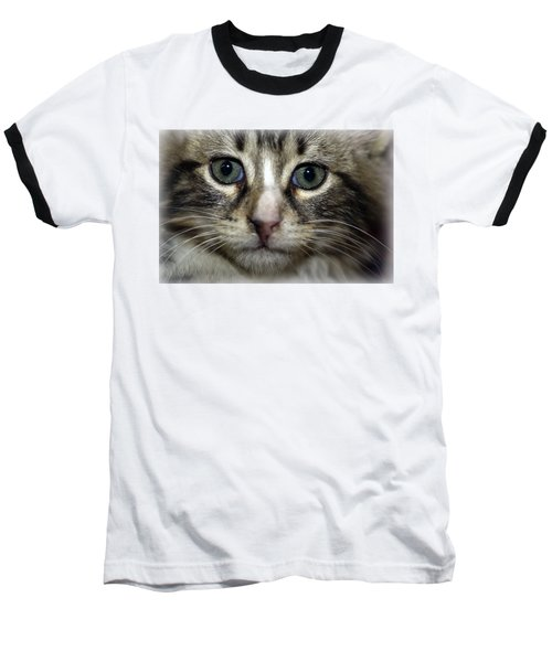 Cat T-shirt 1 Baseball T-Shirt by Isam Awad