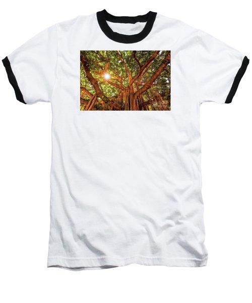 Catch A Sunbeam Under The Banyan Tree Baseball T-Shirt
