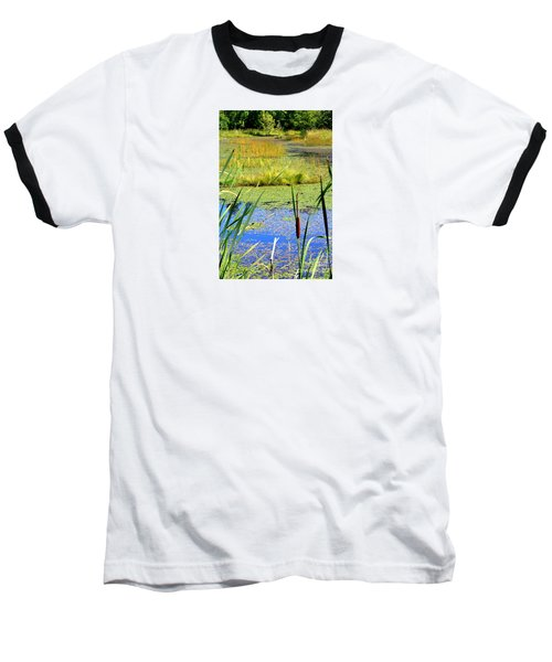 Cattail Baseball T-Shirt by Chris Anderson