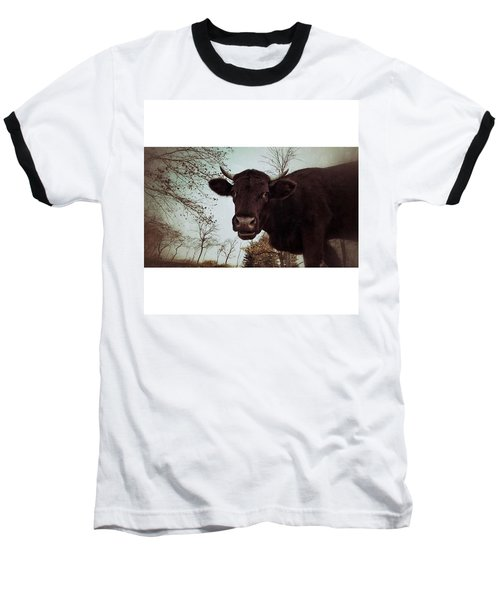 #cattle #kuh #rind #weide #herbst Baseball T-Shirt