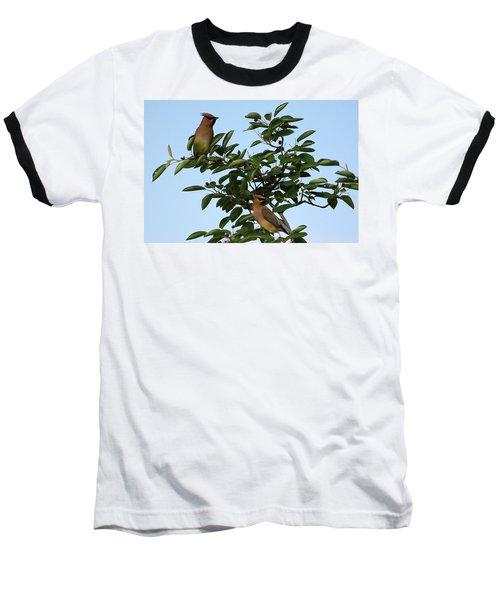 Cedar Waxwing Pair Baseball T-Shirt