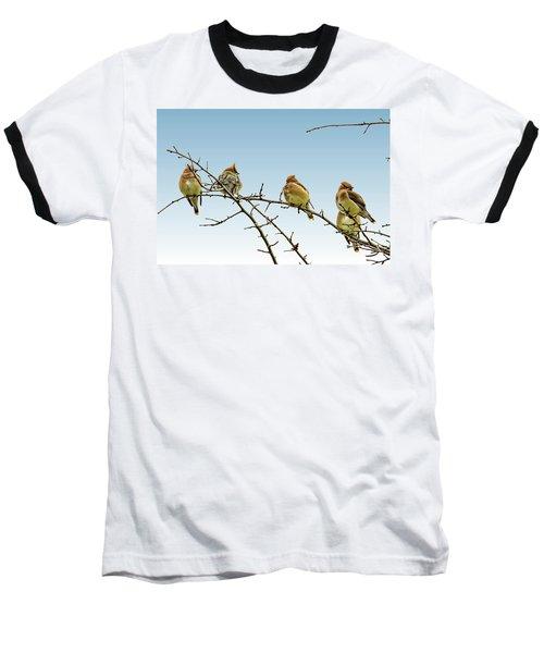 Cedar Waxwings Baseball T-Shirt by Geraldine Scull
