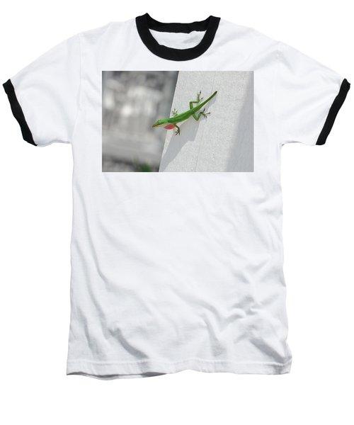Chameleon Baseball T-Shirt by Robert Meanor