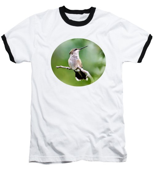 Charming Hummingbird Baseball T-Shirt by Christina Rollo
