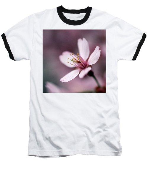 Cherry Blossom Baseball T-Shirt by Joseph Skompski
