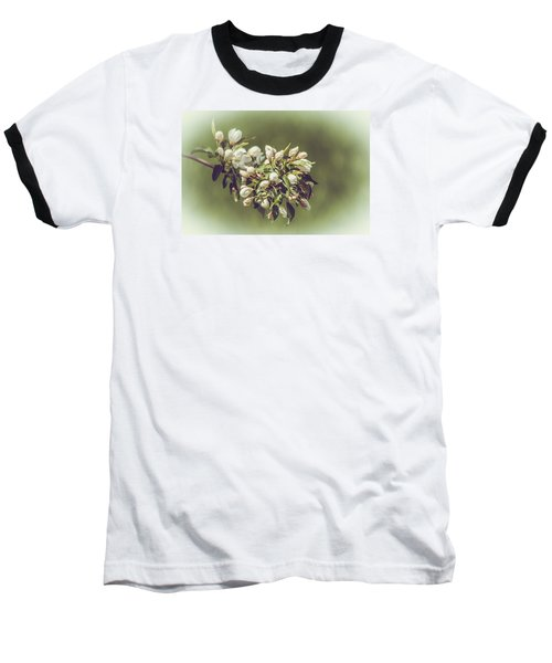 Cherry Blossoms Baseball T-Shirt by Yeates Photography