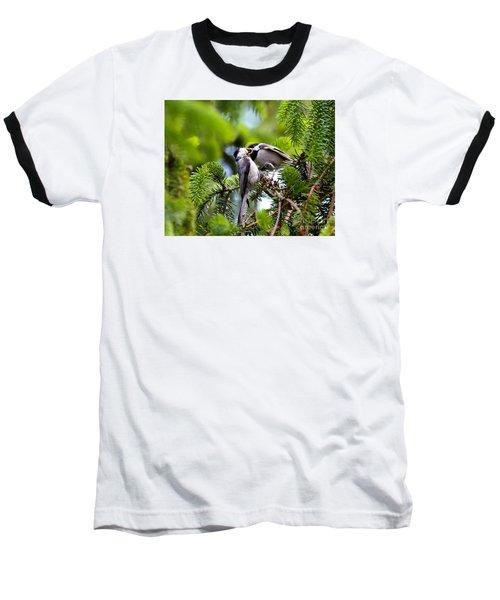 Chickadee Feeding Time Baseball T-Shirt