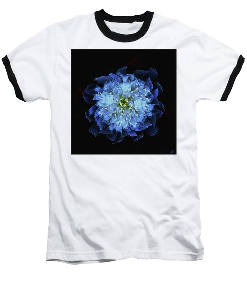 Chicory Abstract Baseball T-Shirt by Stephanie Grant