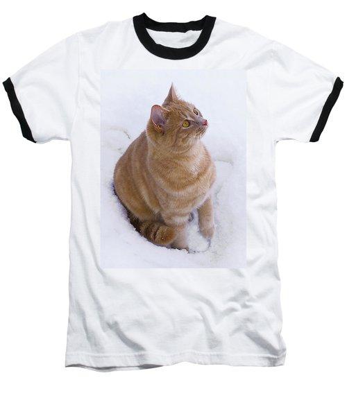 Christmas Cat Baseball T-Shirt