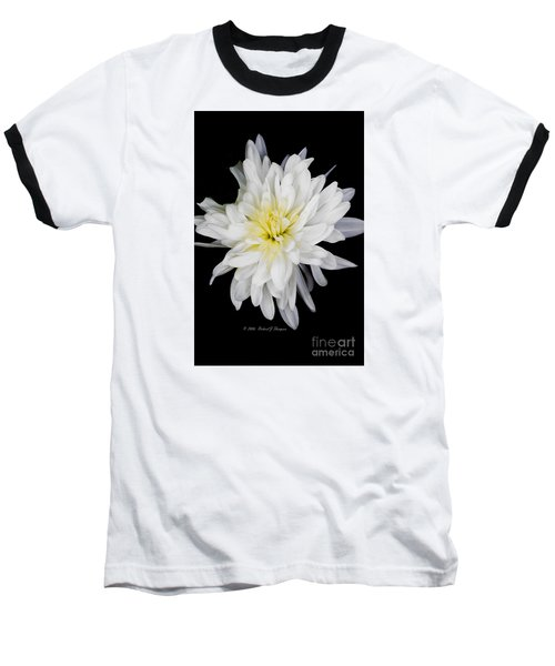 Chrysanthemum Bloom Baseball T-Shirt