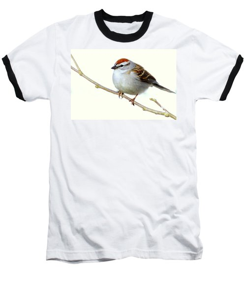 Chubby Sparrow Baseball T-Shirt