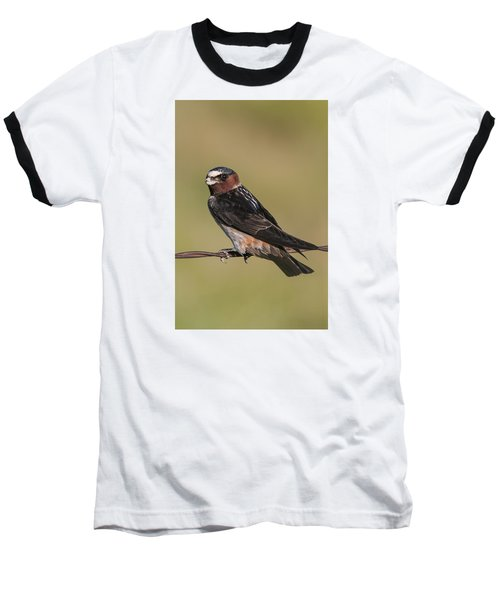 Baseball T-Shirt featuring the photograph Cliff Swallow by Gary Lengyel