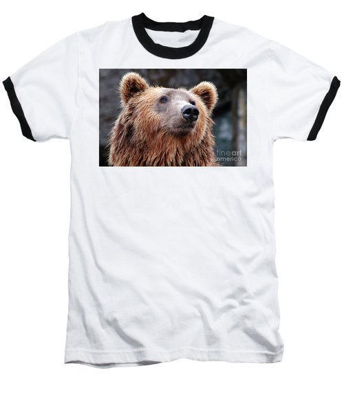 Baseball T-Shirt featuring the photograph Close Up Bear by MGL Meiklejohn Graphics Licensing