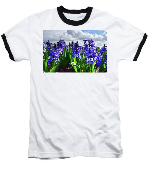 Clouds Over The Purple Hyacinth Field Baseball T-Shirt by Mihaela Pater