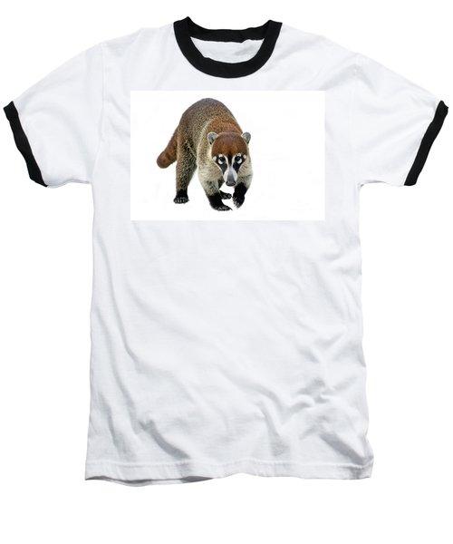 Coatimundi Baseball T-Shirt