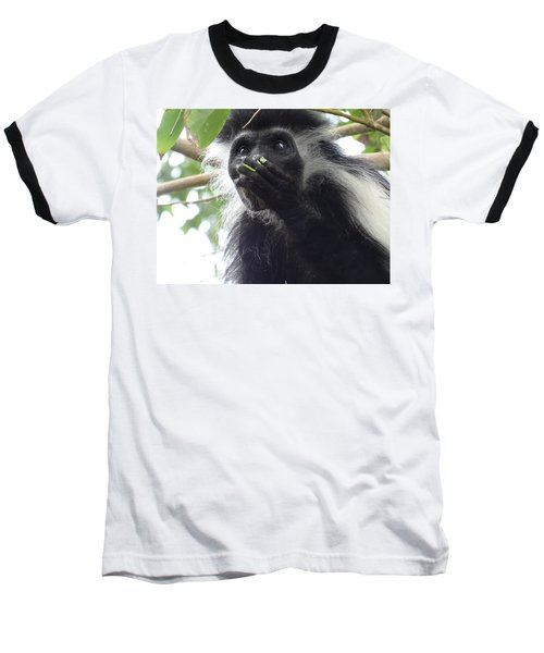 Colobus Monkey Eating Leaves In A Tree 2 Baseball T-Shirt