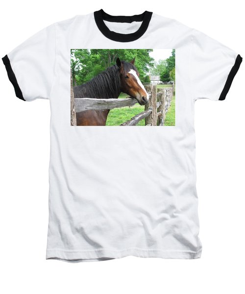 Colonial Horse Baseball T-Shirt