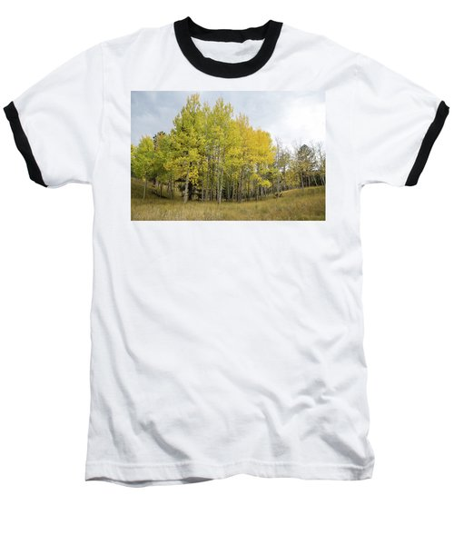 Colorado Aspens In Autumn Baseball T-Shirt