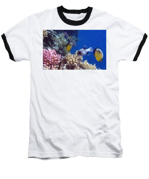 Colorful Red Sea Fish And Corals Baseball T-Shirt