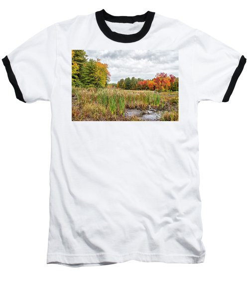 Colorful Webster Bog Baseball T-Shirt