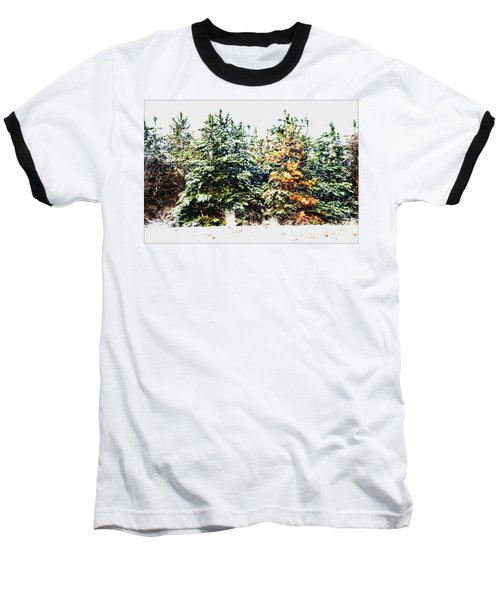 Coloured Trees  Baseball T-Shirt