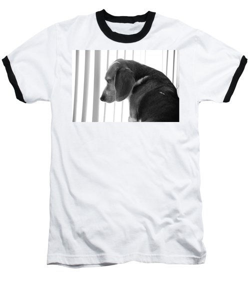 Baseball T-Shirt featuring the photograph Contemplative Beagle by Jennifer Ancker